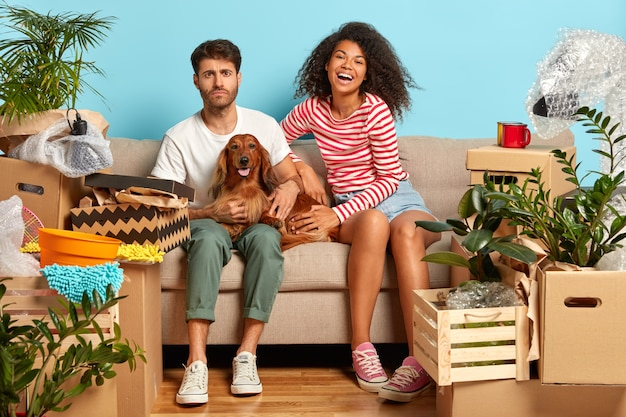 Young diverse family couple play with dog, sit on sofa in empty room, many personal things around, cardboard packages, rent new modern apartment, isolated over blue wall.
