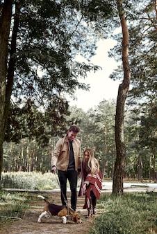 若い家族のカップルは彼らの犬と一緒に森の中を歩いています。スタイリッシュな女性が犬に餌をやろうとしています。明るい太陽が輝いています木を投げる、季節外れ
