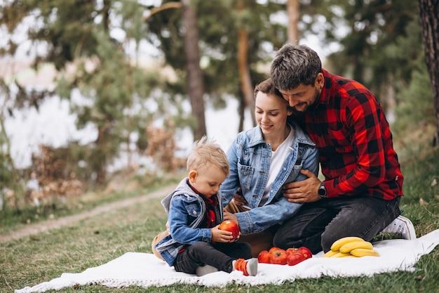 Giovane famiglia nel parco con piscnic