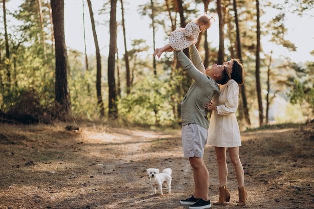 석양에 숲에서 산책하는 귀여운 작은 딸과 함께 젊은 가족
