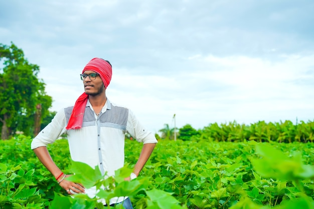 Young farmer in cotton field