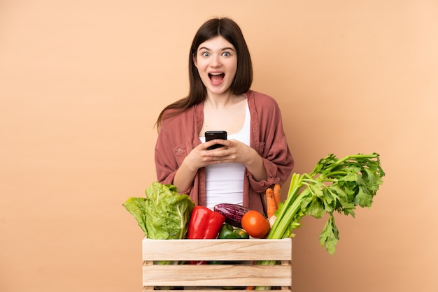 Young farmer girl with freshly picked vegetables in a box surprised and sending a message