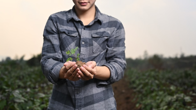 농업 분야에 서 있는 동안 토양에서 자라는 녹색 성장 묘목을 들고 젊은 농부 손.