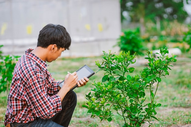 Молодой фермер держа таблетку и проверяя заводы в поле