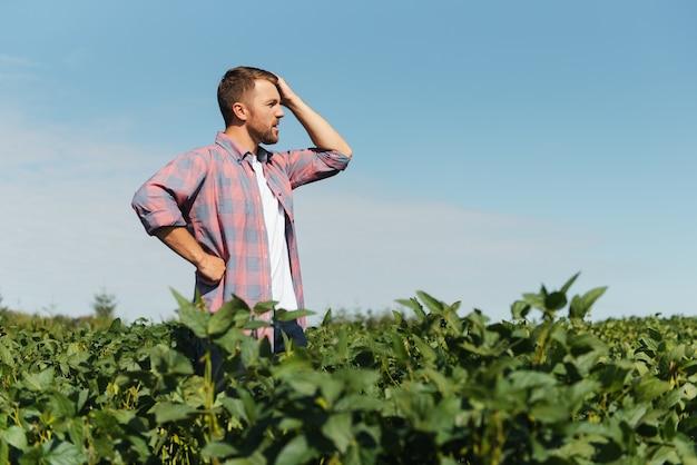 Молодой фермер на соевых полях