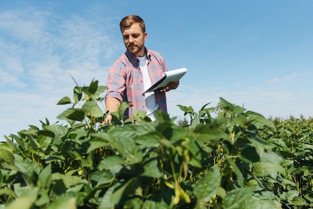 콩 밭의 젊은 농부