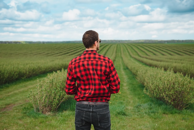 Young farmer inspects currant field