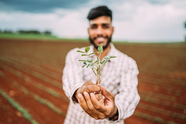 녹색 젊은 식물을 들고 젊은 농부 남자 손. 봄과 생태 개념의 상징입니다.
