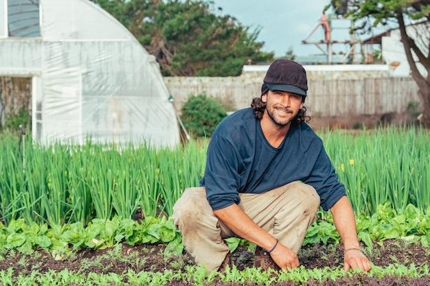 Молодой фермер улыбается и счастлив, собирая свежие и органические овощи, чилийский мужчина улыбается.