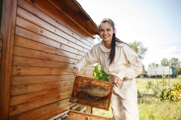 Young female beekeeper pulls out from the hive a wooden frame with honeycomb.