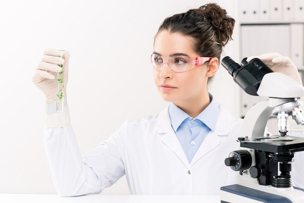 Young female biologist in whitecoat, gloves and eyeglasses looking at flask while studying plant with microscope in laboratory