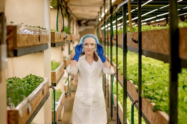 水耕栽培の庭でレタスをチェックする若い女性エンジニア。