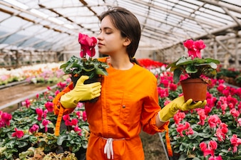 Young female gardener smelling pink flowers in greenhouse