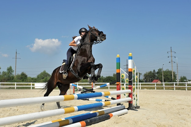 Young female jockey on horse  jumps over a barrier on training.