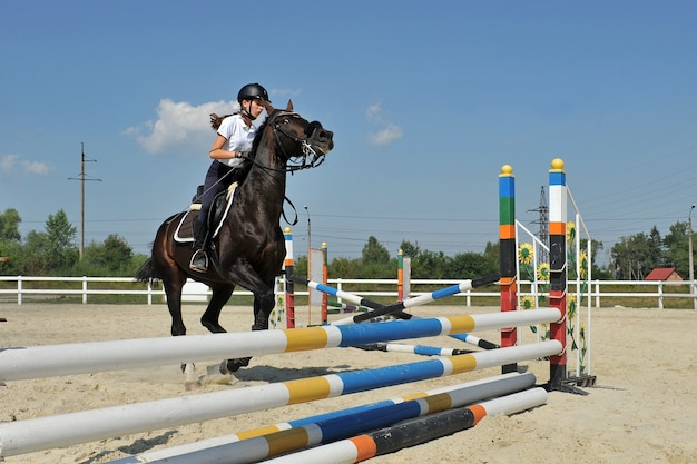 Young female jockey on horse  jumps over a barrier on training. Premium Photo