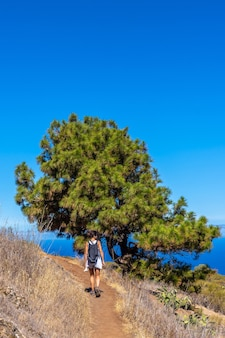 Young female near a dragon tree on the las tricias trail in the north of the island of la palma