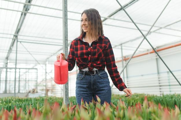 Молодые женские питомник поливают цветы красоты в своей оранжерее.