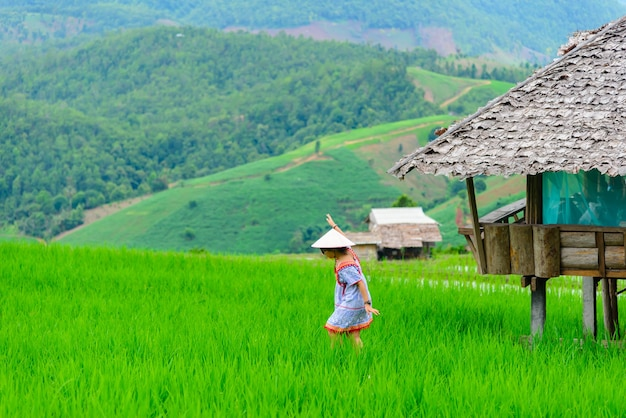 Young female walk and look at the rice field traveler with hat enjoying beautiful view rice fields