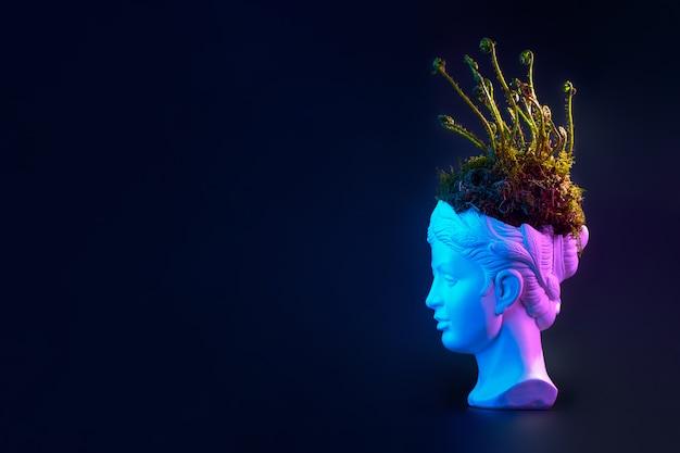 若いシダの芽と古代の像の頭の苔。