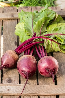 Young,fresh beets with tops on old wooden surface