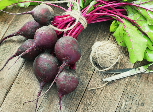 Young, fresh beets with tops on old wooden