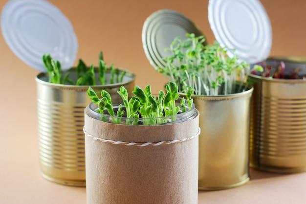 금속 캔에 있는 젊고 신선한 건강한 채소. . 집에서 자급 자족