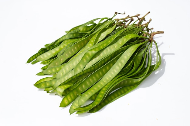 Young fruit of leucaena leucocepphala on white background.