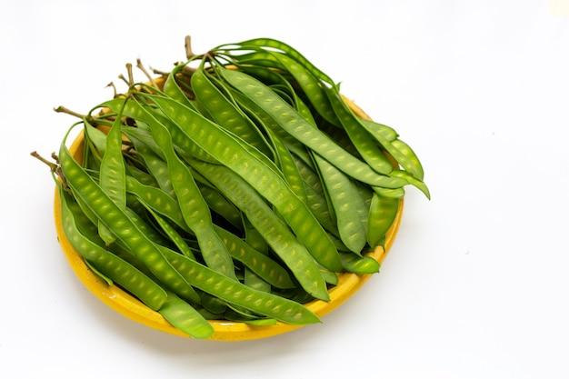 흰색 바탕에 노란색 접시에 leucaena leucocepphala의 젊은 과일.