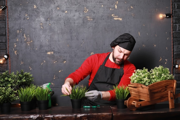 A young gardener cares for seedlings and cuts flowers.gardener with a flower tray. man who takes care of planting seedlings in the spring.