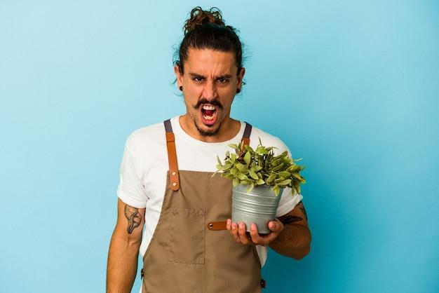 青の背景に分離された植物を保持している若い庭師の白人男性が、非常に怒って積極的に叫んでいます。