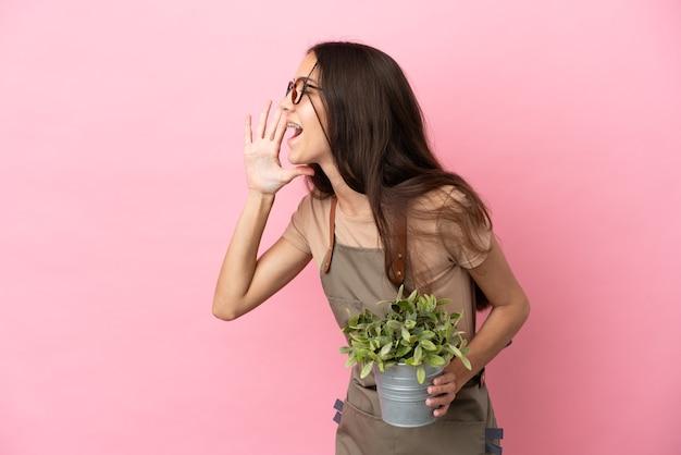 ピンクの背景に分離された植物を保持している若い庭師の女の子は、口を大きく開いて叫んでいます