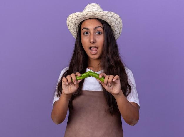Молодая девушка-садовник в фартуке и летней шляпе, держащая сломанный зеленый перец чили, изумлена и удивлена, стоя у фиолетовой стены