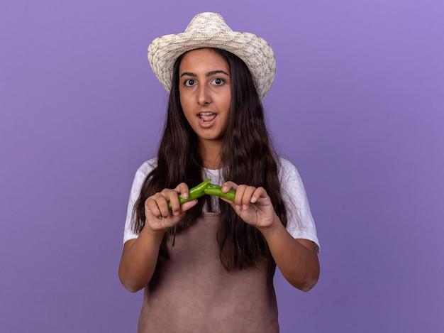 Молодая девушка-садовник в фартуке и летней шляпе держит сломанный зеленый перец чили с удивлением, стоя у фиолетовой стены