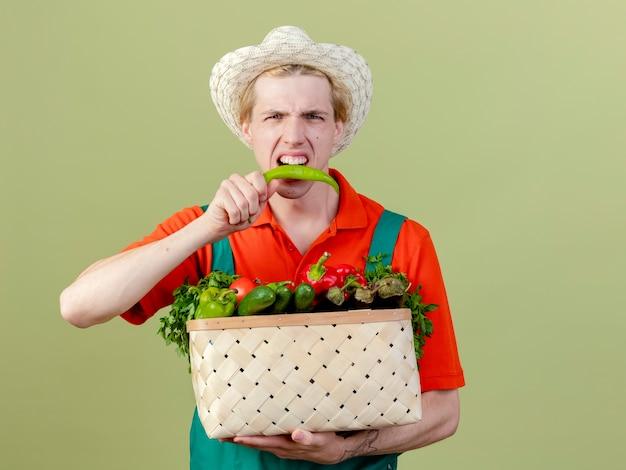 Молодой садовник в комбинезоне и шляпе держит ящик, полный овощей, кусает зеленый острый перец чили, стоя на светлом фоне