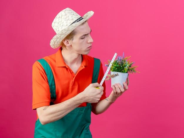 Молодой садовник в комбинезоне и шляпе держит горшечное растение, измеряя его