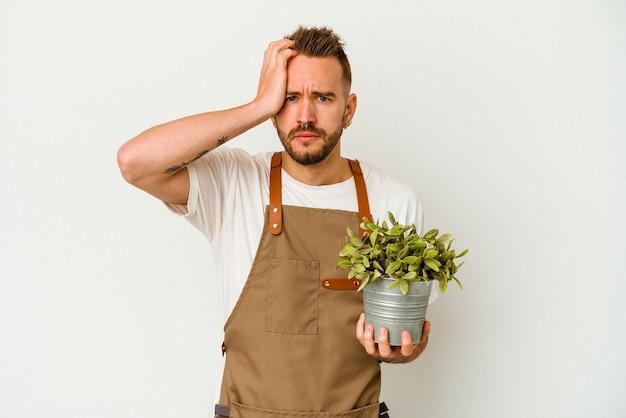 ショックを受けている白い背景で隔離された植物を保持している若い庭師の入れ墨白人男性、彼女は重要な会議を覚えています。