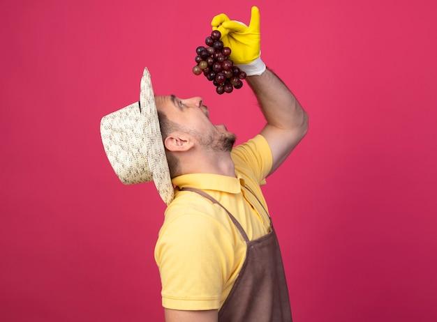 Молодой садовник в комбинезоне и шляпе в рабочих перчатках держит высокую гроздь винограда над ртом и собирается попробовать ее, стоя над розовой стеной
