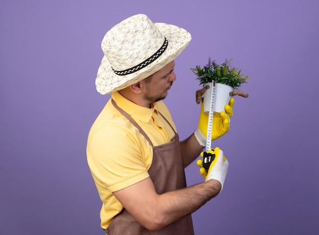 紫色の壁の上に立っている深刻な顔でそれを見てメジャーテープでそれを測定する鉢植えの植物を保持している作業手袋でジャンプスーツと帽子を身に着けている若い庭師