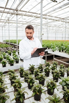 Young gardener working with plants in greenhouse