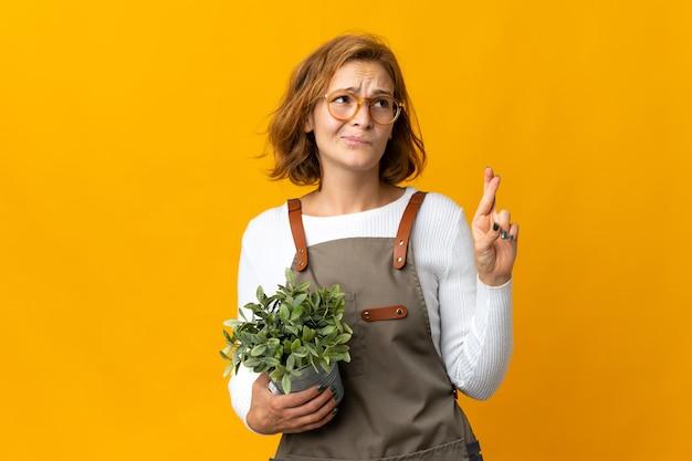 노란색 배경에 고립 된 식물을 들고 젊은 그루지야 여자는 손가락을 건너고 최고를 기원합니다.