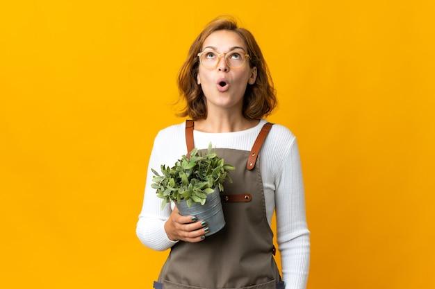 見上げると驚いた表情で黄色の壁に隔離された植物を保持している若いジョージ王朝様式の女性