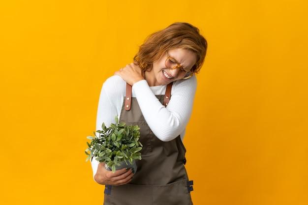 노력을 한 데 대한 어깨 통증으로 고통받는 노란색 벽에 고립 된 식물을 들고 젊은 그루지야 여자