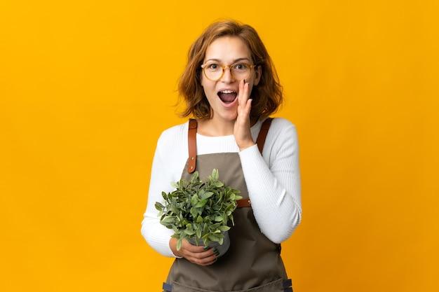 놀람과 충격을받은 표정으로 노란색 벽에 고립 된 식물을 들고 젊은 그루지야 여자