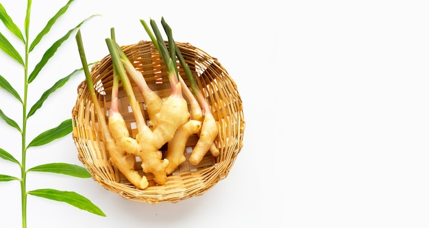 Young ginger in bamboo basket on white background.