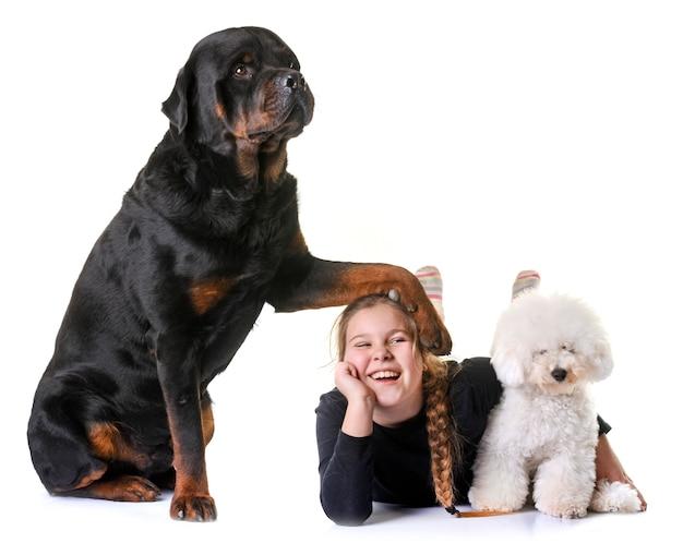 Молодая девушка и собаки