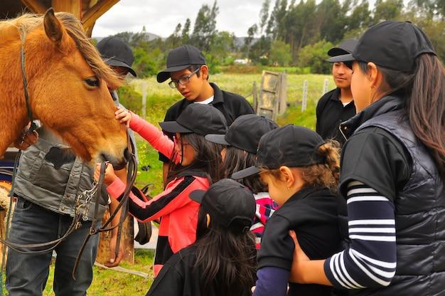 若い女の子と10代の若者が馬について学びます。エクアドルの乗馬学校