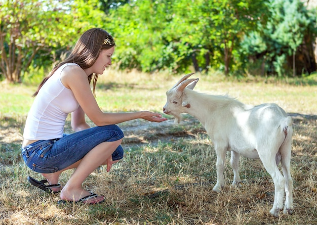 Young girl feeding a small white goat in a grove.