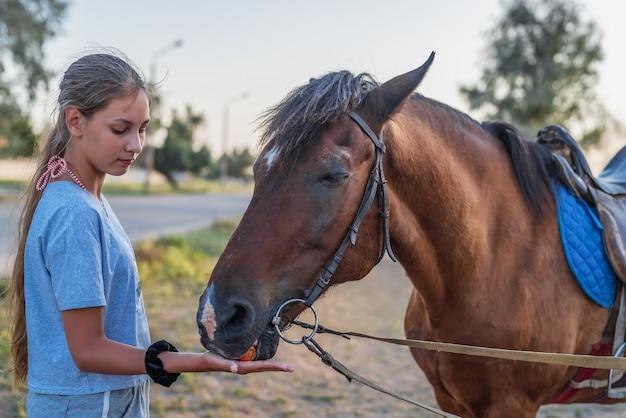 A young girl feeds a horse a carrot closeup in natural light Premium Photo