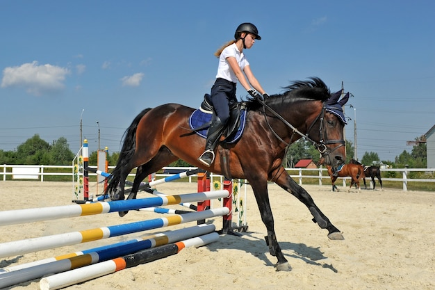 Young girl on her bay horse jumps over a barrier on training.