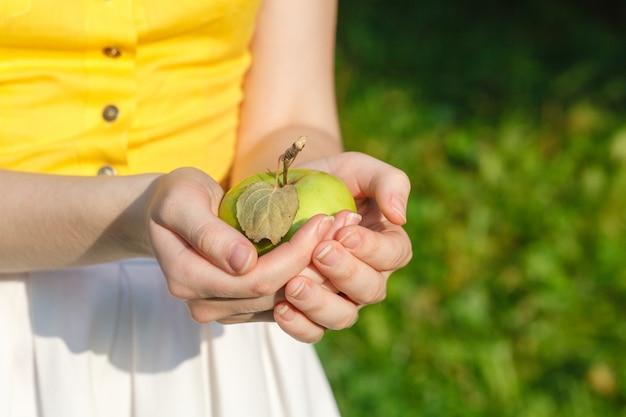 Молодая девушка держит корзину яблок в саду